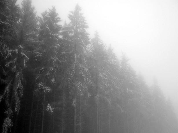 Fade to fog