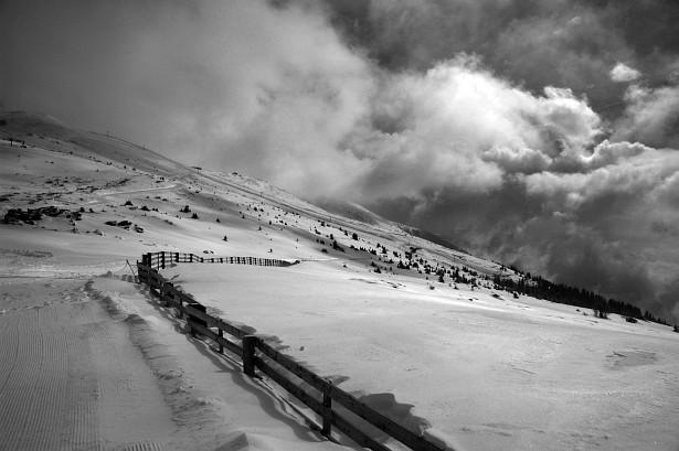 Winterland #3