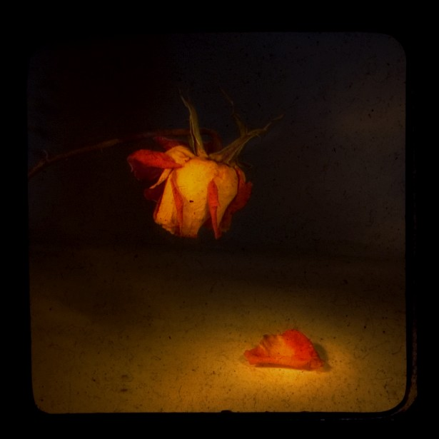 Leaving something behind #2 (ttv)