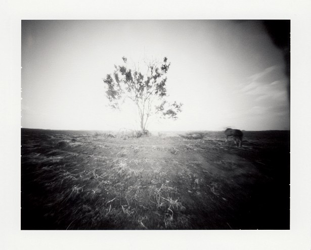 Apocalyptic || Zeroimage 4x5 pinhole camera | F/138 | Type 72 polaroid film