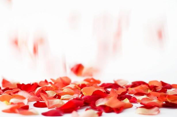 Raining petals || Nikon D70 | 50mm F/1.8 D | 1/50 sec | F/1.8 | ISO 400