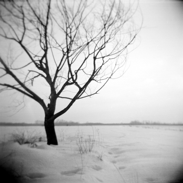How long? || Holga | Shanghai GP3 | ISO 100