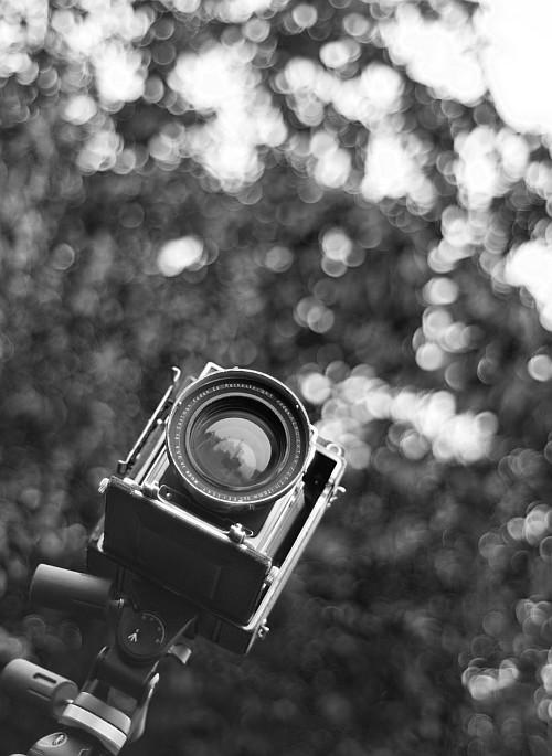Graflex with Kodak Aero Ektar #1 || Nikon D300 | 50mm F/1.8 D | 1/125 sec | F/1.8 | ISO 200