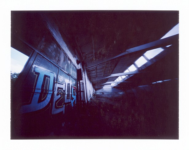 DEOR || Zeroimage 4x5 with Fuji PA-145 holder | F/138 | Fuji FP-100C (expired)