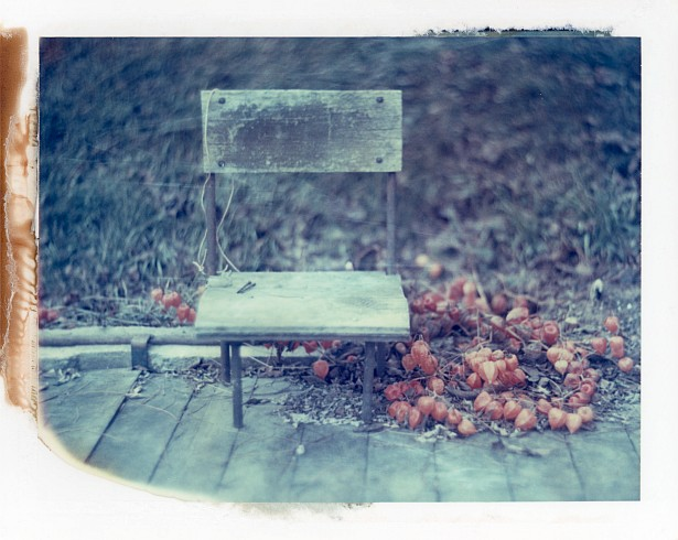 Empty until spring (polaroid version) || Graflex with Fuji PA-145 holder | Kodak Aero Ektar 178mm | Polaroid ID-UV (expired)