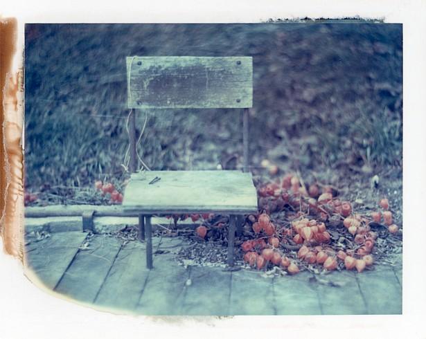Empty until spring (polaroid version) || Graflex with Fuji PA-145 holder | Kodak Aero Ektar 178mm | Polaroid ID-UV (expired)