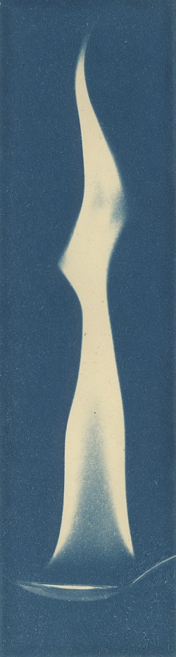 Light my fire (cyanotype version)