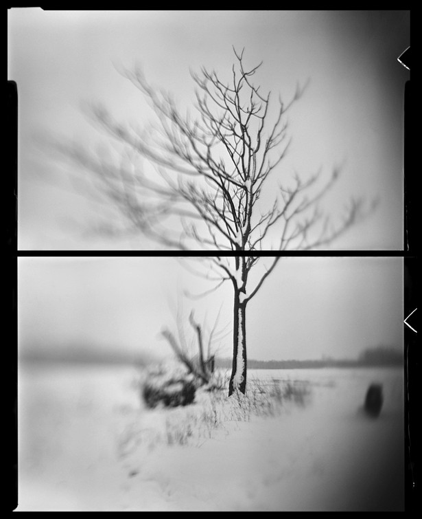 I don't need an axe    Graflex   Kodak Aero Ektar 178mm   2 x Wephota NP 22 sheet film