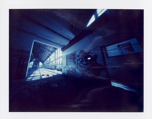 Look into my eyes || Zeroimage 4x5 | F/138 | Polaroid ID-UV