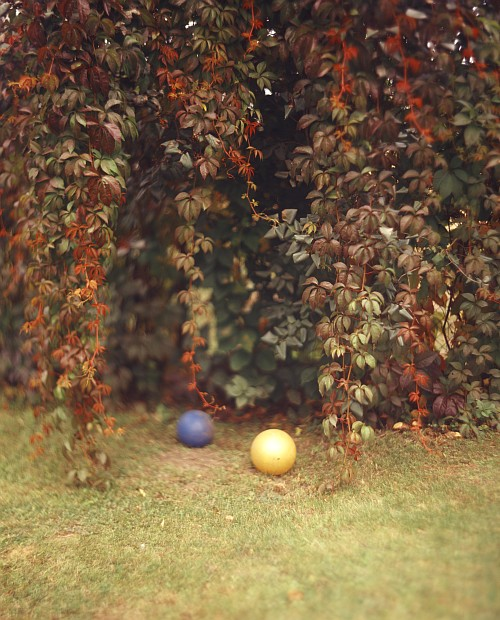 Balls || Graflex Speed Graphic | Kodak Aero Ektar 178mm | Kodak E100VS | ISO 100