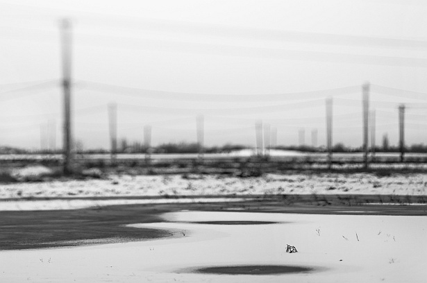 Suburban land-water-snowscape || Nikon D300 | Homemade tilt-shift lens | 1/800 | ISO 200