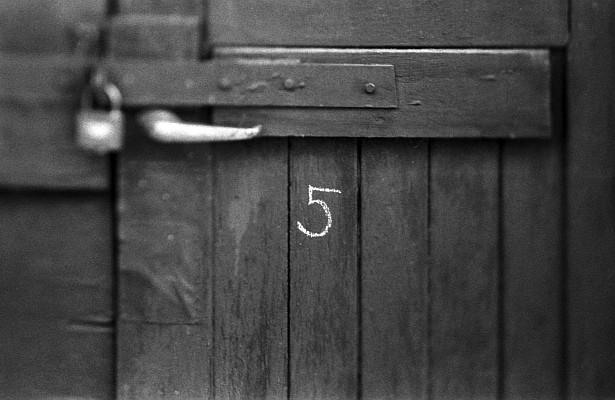 5 || Nikon F3 | Homemade tilt-shift lens | Foma Fomapan 400