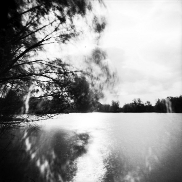 Windy day at the lake || Pinholga | Ilford Pan F Plus