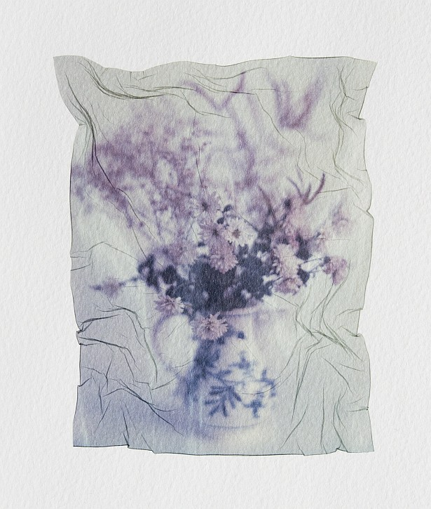 Pola flowers #4 || Graflex Speed Graphic | Kodak Aero Ektar 178mm | Polaroid ID-UV | Emulsion lift on watercolor paper
