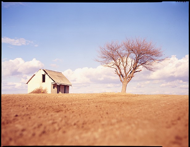 Empty house, lonely tree || Graflex Speed Graphic | Kodak Aero Ektar 178mm | Kodak E100VS