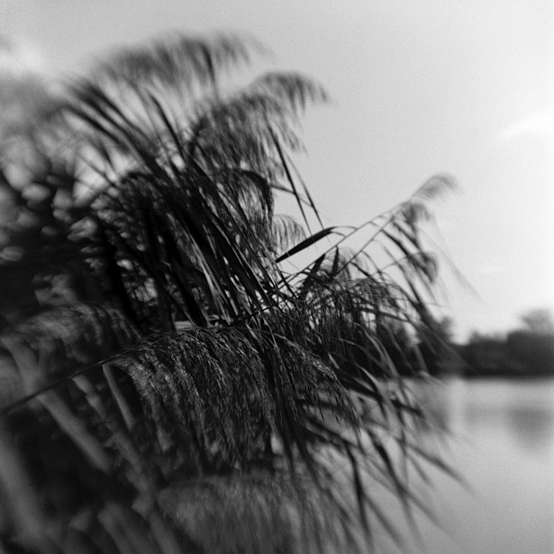 Fishing stories #2 || Kodak Brownie Hawkeye Flash with flipped lens | Foma Fomapan 100