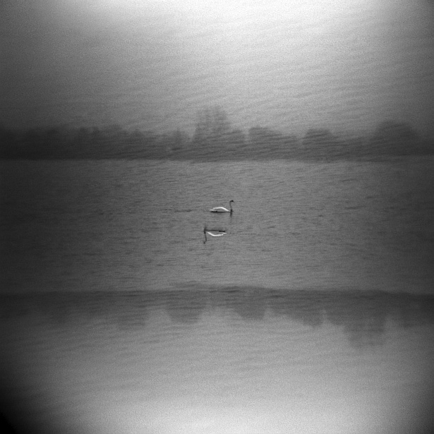 Seeing double || Holga | Foma Fomapan 100