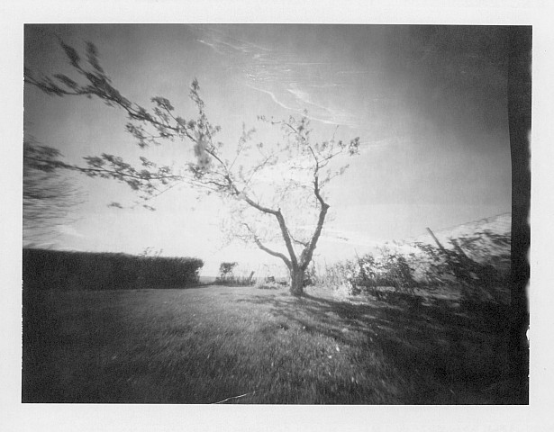 Worldwide Pinhole Photography Day 2013 | Zeroimage 4x5 | F/138 | Polaroid Polapan 553 (expired in 2000)